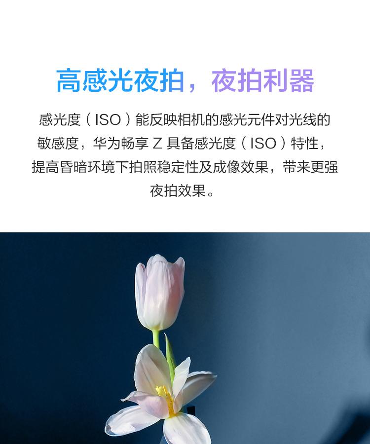 中山手机网 华为(huawei) 华为畅享z 5g手机专卖
