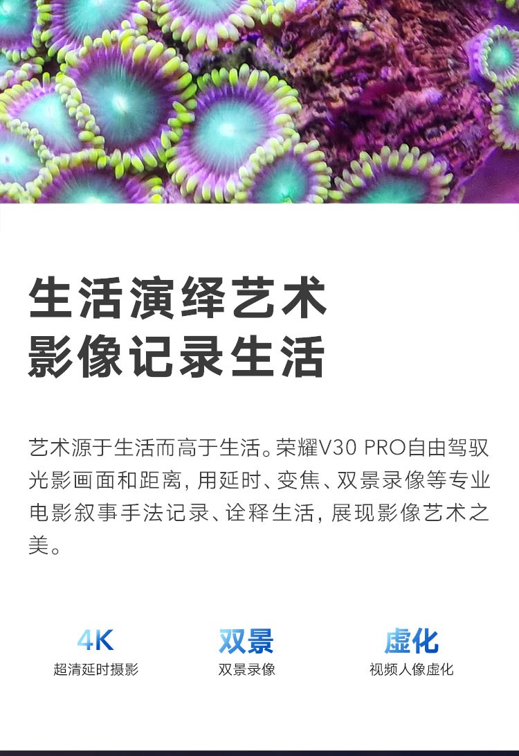 中山手机网 华为(huawei) 华为 荣耀v30pro手机专卖